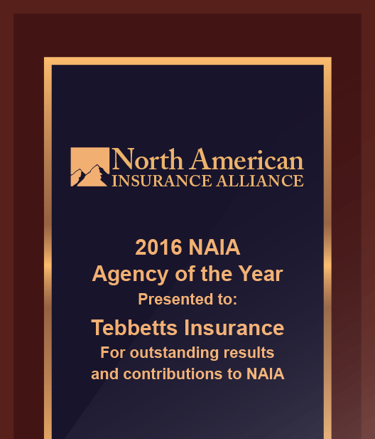 2016 agency of the year graphic new - Affordable Commercial Insurance For New England Based Businesses